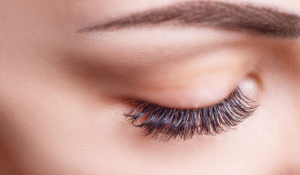 Beauty Salon Brow & Lashes Treatments in Plymouth